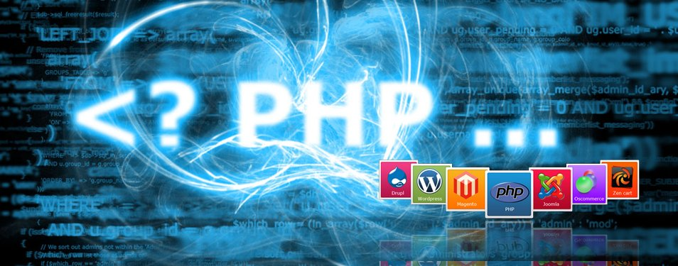 Professionelle Web Entwicklung